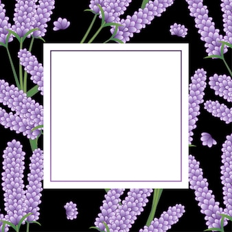 Цветочная рамка лаванда черный фон