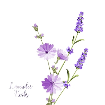 Lavender herbs bouquet