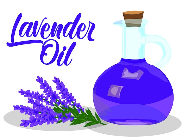 Lavender oil vector on white background