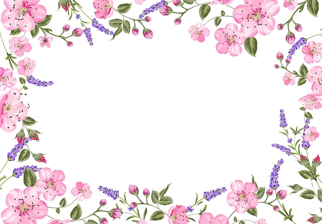 Lavender provence frame background.