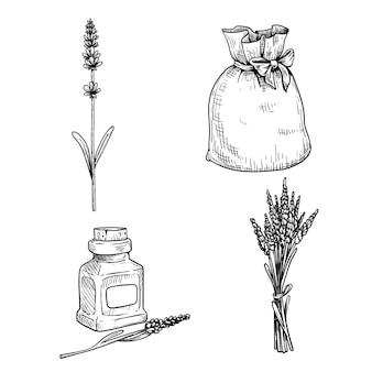 라벤더 스케치 세트. 꽃이 든 단일 라벤더 줄기, 라벤더가 든 가방, 꽃다발 및 라벤더 오일이 작은 병에 들어 있습니다. 손으로 그린 그림