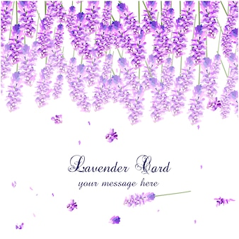 Lavender watercolor card design