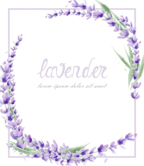 Lavender wreath in watercolor