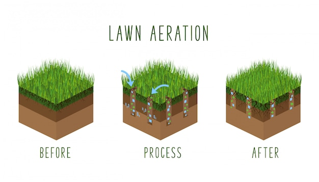 Lawn aeration process steps, isometricbefore and after, lawn grass care service, gardening