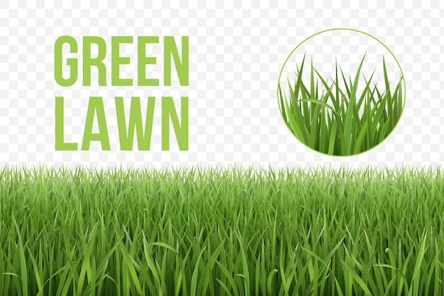 Lawn of grass seamless horizontal green pattern and fragment of grass patch. s