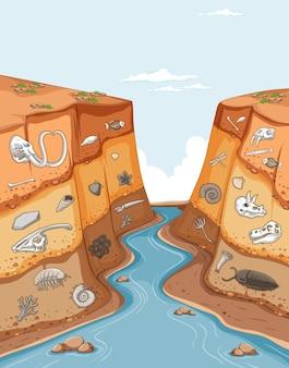 동물 화석을 보여주는 토양 층