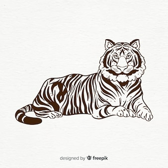 Laying tiger background