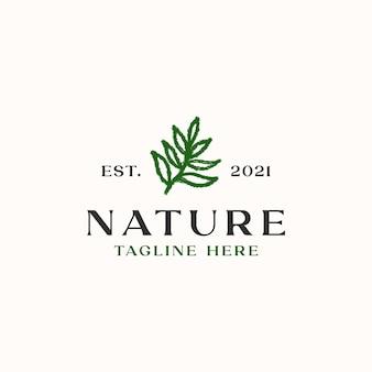 Шаблон логотипа кисть лист, изолированные на белом фоне