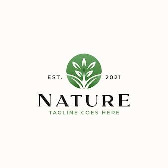 Лист зеленый градиент, шаблон логотипа природы, изолированные на белом фоне