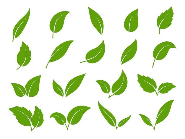 Значок листа. зеленые листья деревьев и растений, различной формы. эко веганский росток или набор изолированных элементов био листвы