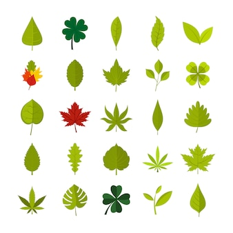 Leaf icon set. flat set of leaf vector icons collection isolated