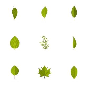 Leaf icons set, flat style
