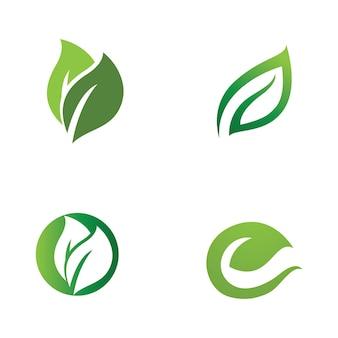잎 잎 로고 녹색 벡터 이미지
