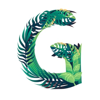 さまざまな種類の緑の葉と白い背景で隔離の葉フラットベクトルイラストと葉文字g。