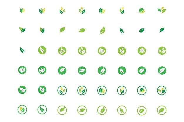 잎 로고 생태 자연 요소 벡터