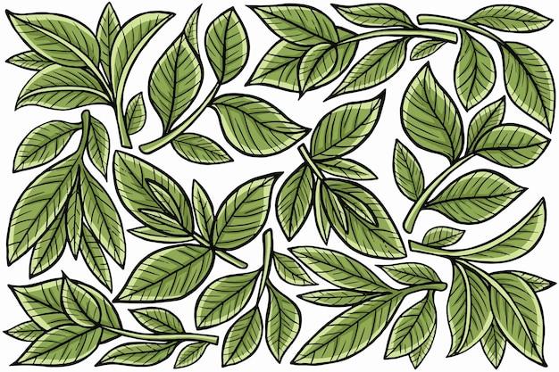 Листовая природа в плоском стиле дизайна