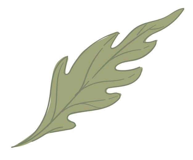 식물 나무 또는 관목의 잎 자연 단풍
