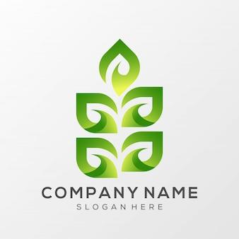 Leaf дизайн логотипа готов к использованию premium vector