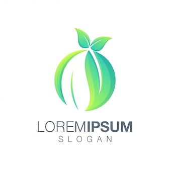 Leaf round color logo template