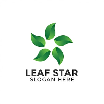 Leaf star logo design template vector isolated