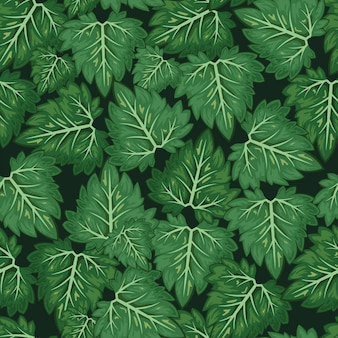 Leaf vector pattern background