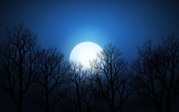 Leafless tree and full moon at night