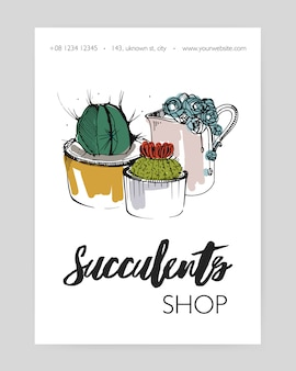 Leaflet template with several different succulents growing in pots and creamer hand drawn on white background and place for text. potted desert plants, natural home decorations. illustration.