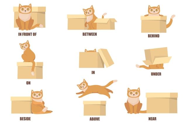 猫と箱のフラットセットの助けを借りて前置詞を学ぶ