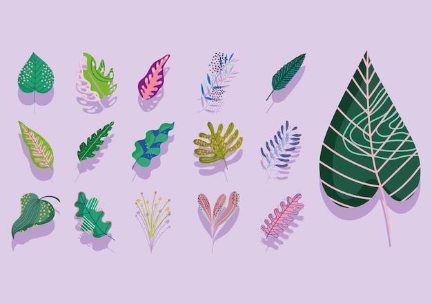 Листья абстрактные украшения листва иконы коллекции иллюстрации