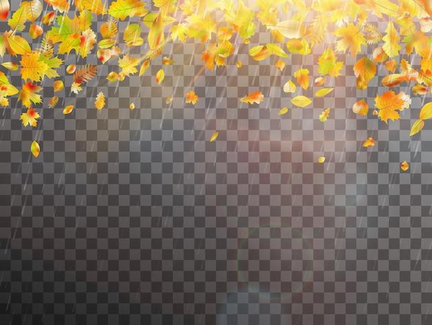 葉と明るい日光。テキストのコピースペースを持つ秋のコンセプトテンプレート。そしてまた含まれています