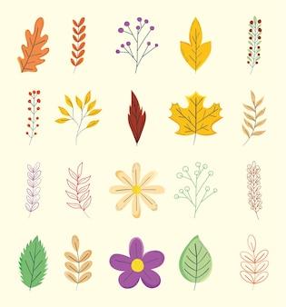 나뭇잎과 꽃
