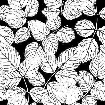 枝、小枝、植物の葉と葉