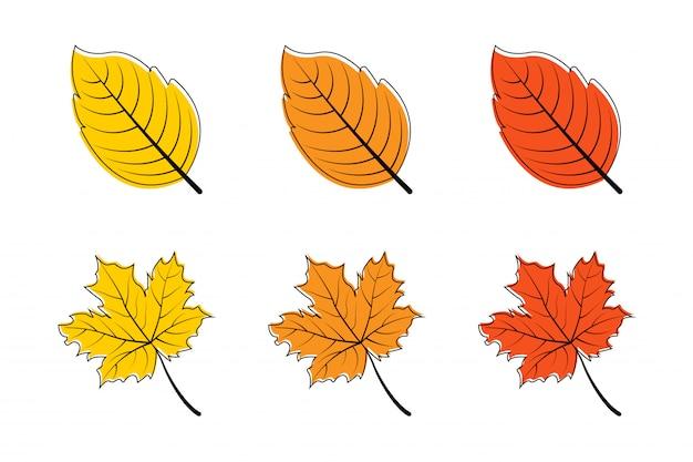葉。秋の葉。カエデの葉。葉の色違い。紅葉もみじ。