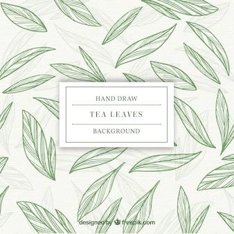 Листья фона для приготовления чая