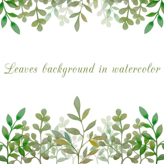 Leaves background in watercolor