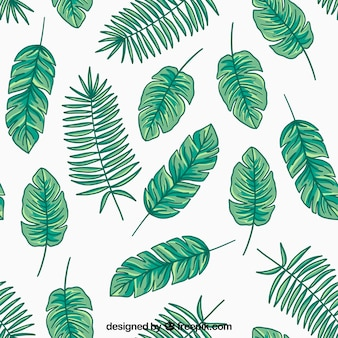 Leaves collection in hand drawn style