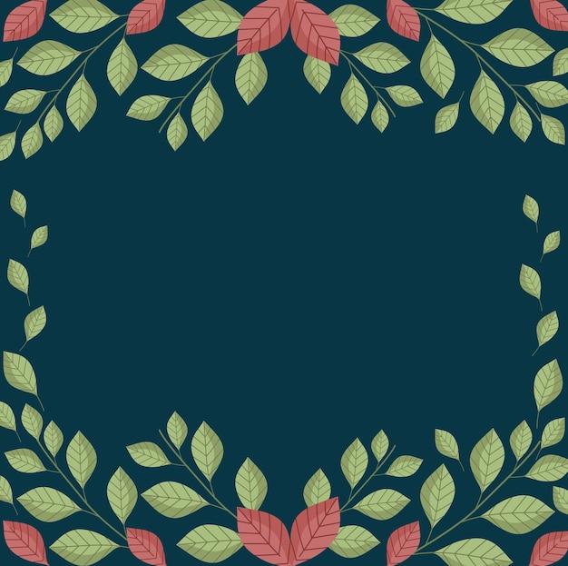 잎 단풍 자연 가지 식물 검은 배경 일러스트 레이션