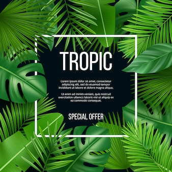 Leaves frame. template with nature green plants tropical picture with place for your text