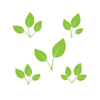 잎 아이콘 세트 장식