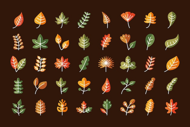 식물 자연 꽃과 테마 그림의 선 및 채우기 스타일 아이콘 컬렉션 디자인 나뭇잎