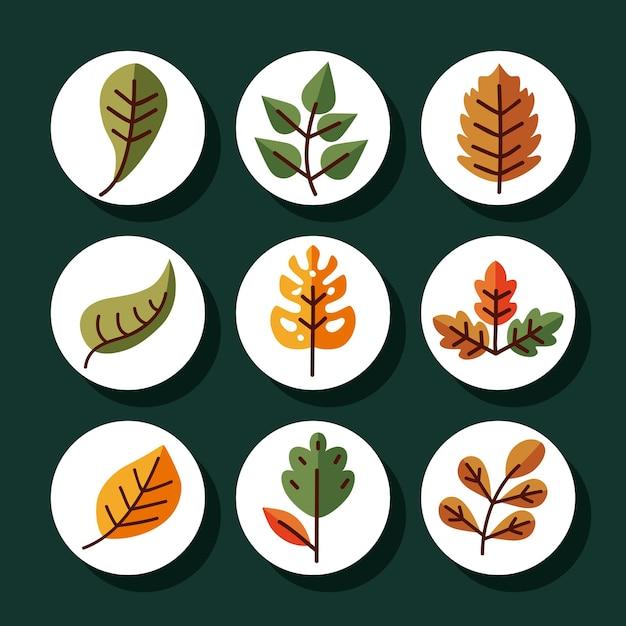 식물 자연 꽃과 테마 그림의 선 및 채우기 스타일 아이콘 세트 디자인 나뭇잎