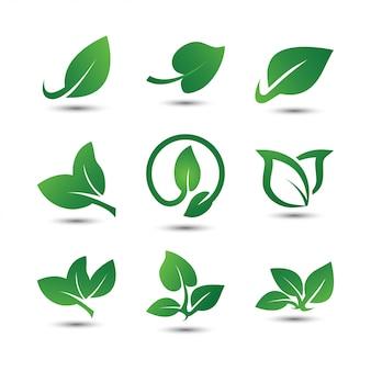 Листовые логотипы