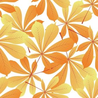 밤나무 잎입니다. 노랗게 물든 단풍. 가 완벽 한 패턴입니다.