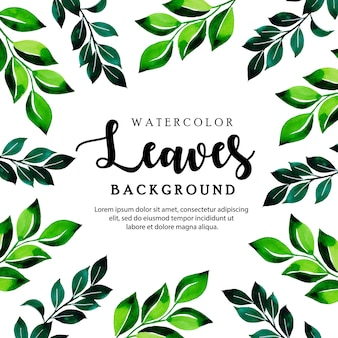 Leaves watercolor background