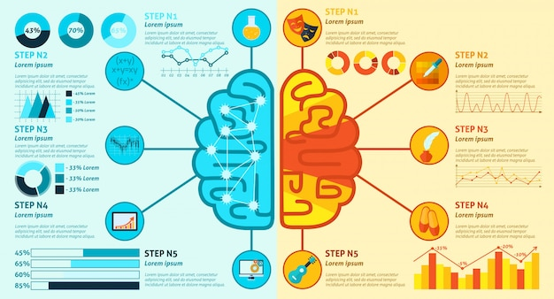 Левая и правая мозговая инфографика