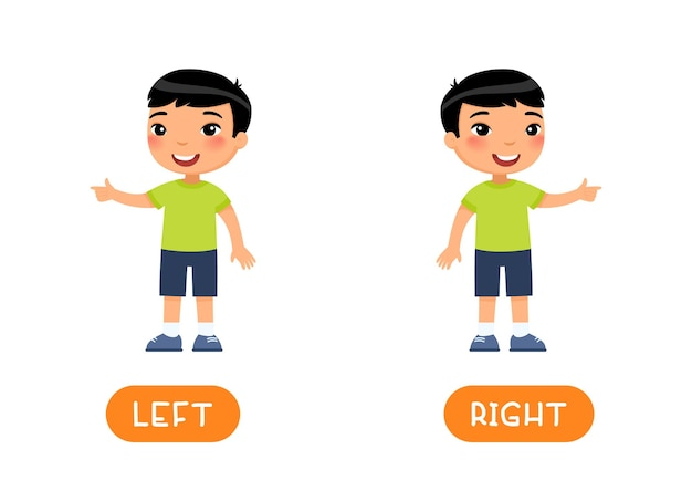 Left and right antonyms word card vector template