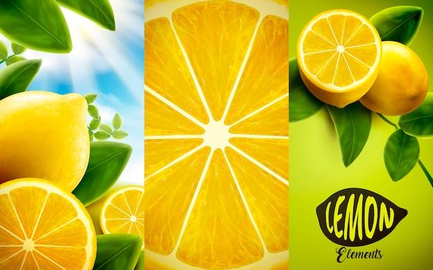 Иллюстрация элементов лимона и зеленых листьев