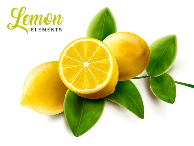 레몬과 녹색 잎 요소 그림 프리미엄 벡터