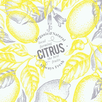 Lemon background. hand drawn vector fruit illustration. engraved style. retro citrus background.