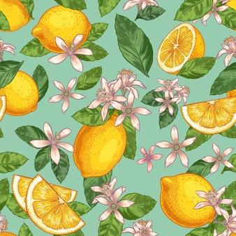 Лимонный цвет бесшовные модели. ручной обращается желтые лимоны с зелеными листьями и цветами цитрусовых. ботанический сад фрукты иллюстрации.
